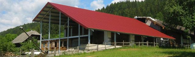 Hallenbau Landwirtschaft